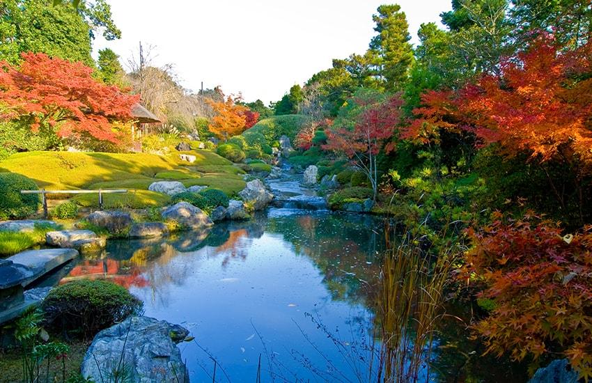 Voyage Japon Organisez Votre Circuit Au Japon Avec Notre