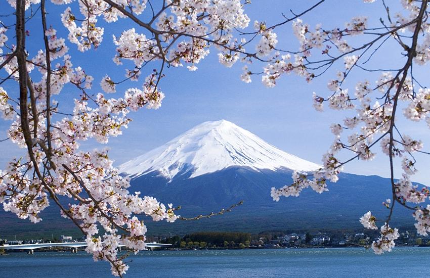 japon - Photo