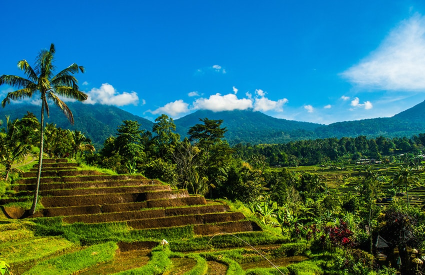Bali, in the Heart of Nature